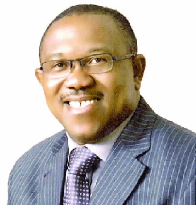 Peter Obi, others to train 1,000 youths on employable skills