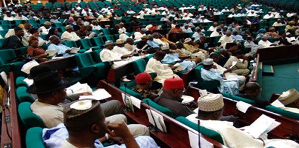 Reps probe $22bn Brass LNG project