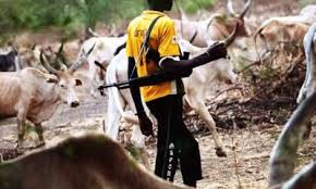 herdsmen killings