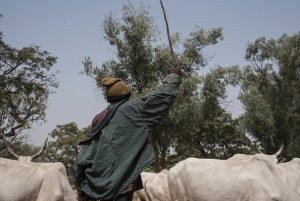 movement permits Fulani herdsmen