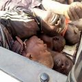 BENUE KILLINGS