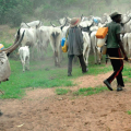 Herdsmen NASARAWA killings