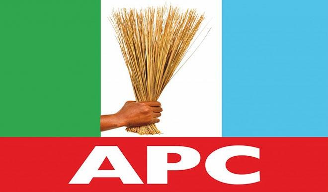 At last, Imo APC elects new Chairman