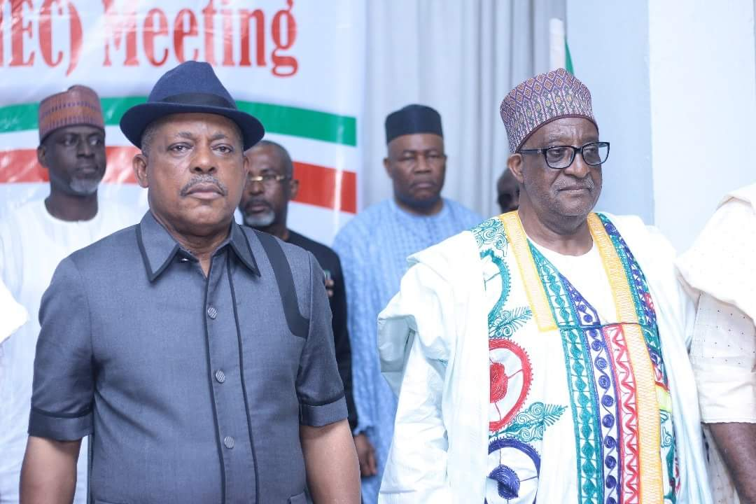 2019: PDP divided over name change proposal