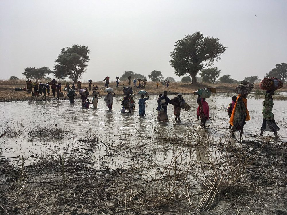 BREAKING: 8,000 refugees flee Borno to Cameroon