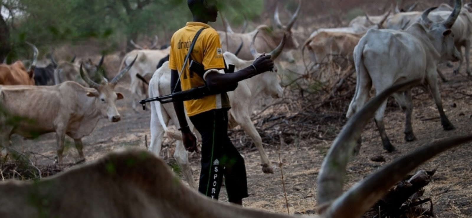South West Obas read the riot act to Fulani herdsmen in Yorubaland