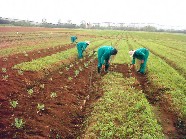 Don: Only adequate investments in agriculture can end poverty