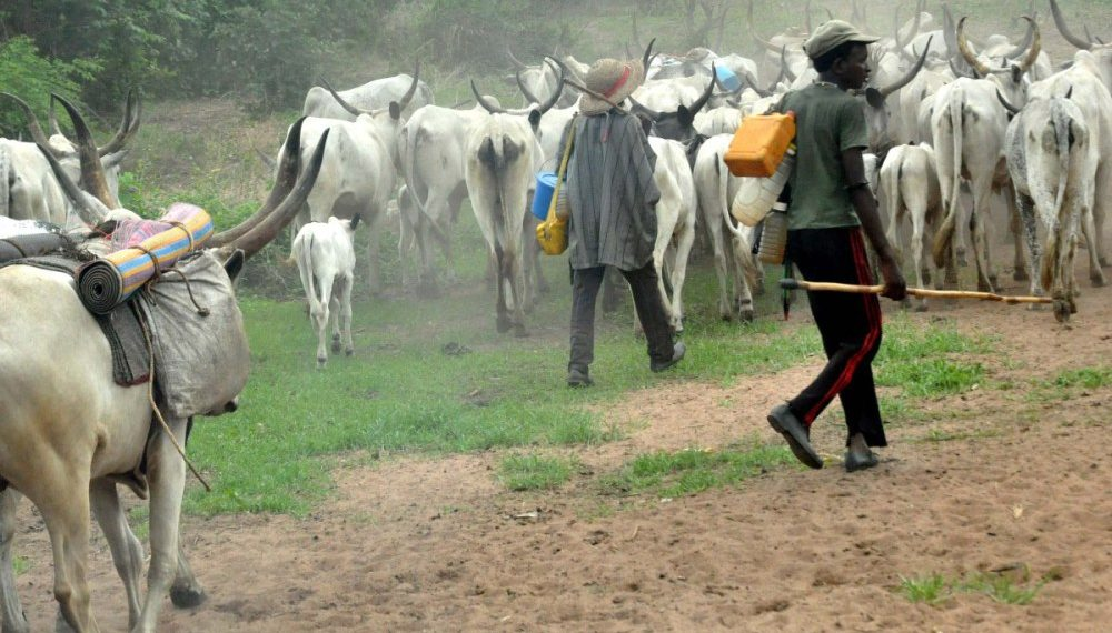 South under herdsmen's siege, Yoruba elders, Ohanaeze cry out