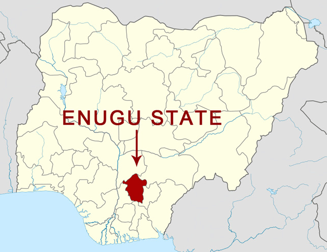 Enugu community invites govt to acquire 132 hectares of land for development - Daily Sun