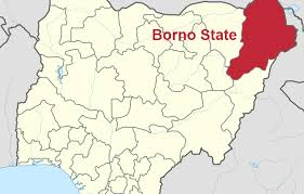 Borno pledges N1.8bn for recovery projects