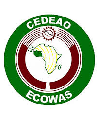 ECOWAS Commission laments rising cost of election in Africa