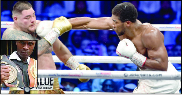 Aftermath of Ruiz defeat: Oboh hails Joshua, advices him over Wilder, Fury
