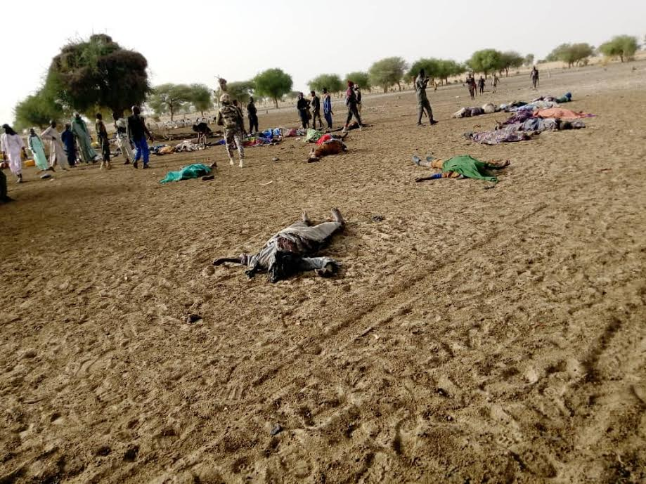 69 killed as terrorists strike in Borno