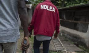 NDLEA arrests man 10 years after escaping arrest – The Sun Nigeria