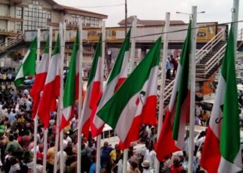 Ondo guber : PDP panel disqualifies two aspirants, clears 7