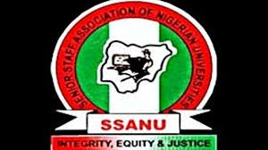 SSANU, NASU branches give FG conditions to suspend 3-week-old strike – The Sun Nigeria